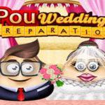 Oeuf Préparatifs De Mariage