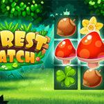 Forêt De Match